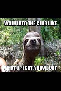 sloth... just flipping funny lol   Humorous Things ...