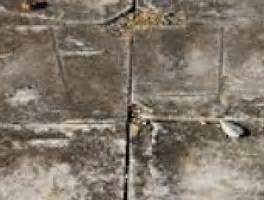 asbestos safety advice    test   remove