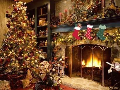 Christmas Animated Wallpapers Fireplace Tree Lights Trees