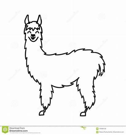 Llama Alpaca Cartoon Drawing Outline Clip Animal