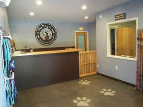Dog Grooming Kennels Ideas