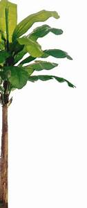 Silk Tree Warehouse Wholesale Artificial Palm Trees