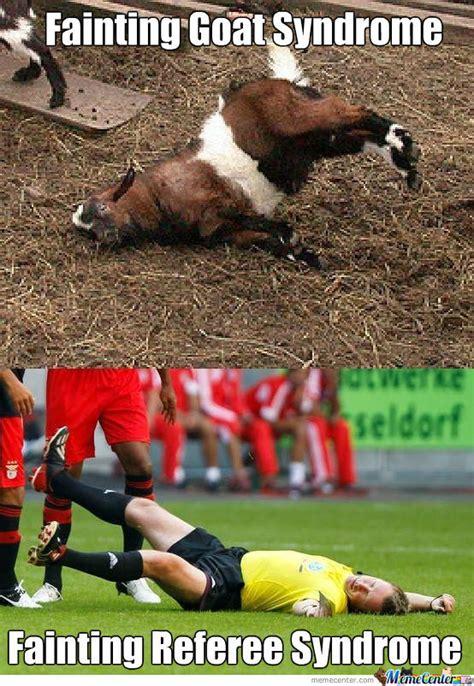 Fainting Meme - fainting goat memes image memes at relatably com