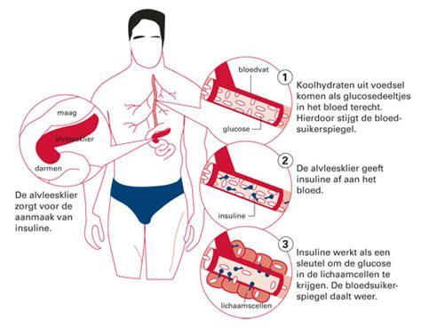 Gevolgen van overgewicht