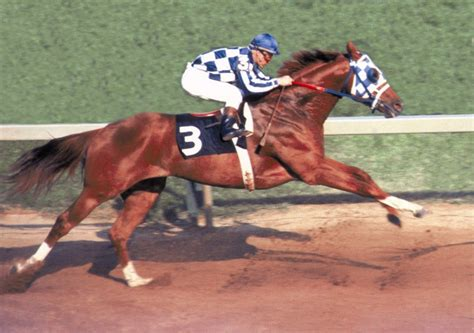 secretariat famous horse triple crown preakness racehorses race racing most winners 1973 horses racehorse history stallions stakes legacy belmont six