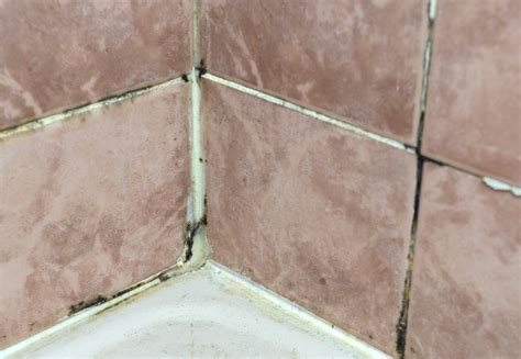 difference  cement  epoxy grout