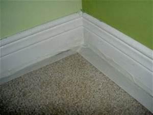 se debarrasser des punaises de lit en 1 jour With nettoyage tapis avec anti puce canapé