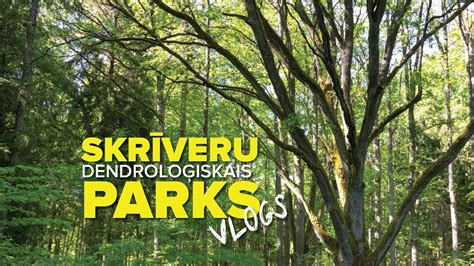 Skrīveru dendroloģiskais parks - YouTube