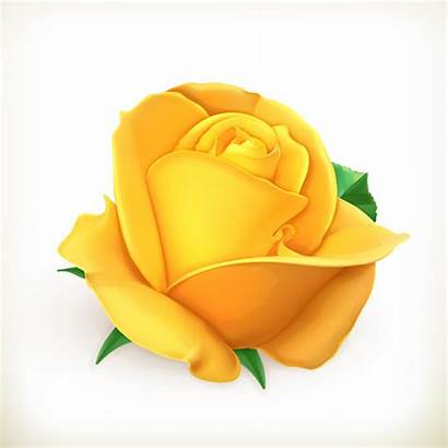 Rose Yellow Vector Flower Svg Illustration Clip
