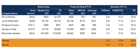 business valuation  corporate valuation modeling
