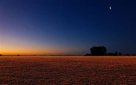 Night in the field wallpaper