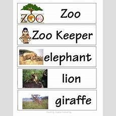 Zoo Words For Word Wall By Mrs A  Teachers Pay Teachers