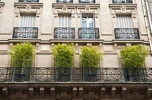 Pot Pour Balcon : quels types de bambou planter sur un balcon ~ Teatrodelosmanantiales.com Idées de Décoration