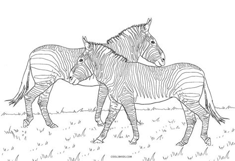 printable zebra coloring pages  kids coolbkids