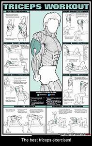 16 Best Tricep Exercises Images On Pinterest