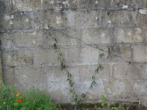 Crochet Mur Beton : un mur cacher cuisine crochet tricot et autres ~ Zukunftsfamilie.com Idées de Décoration