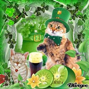 Cats on happy st.patricks day Picture #128369405 | Blingee.com