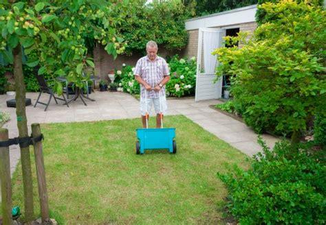 Wann Dünge Ich Meinen Rasen by Rasen Richtig Pflegen Obi