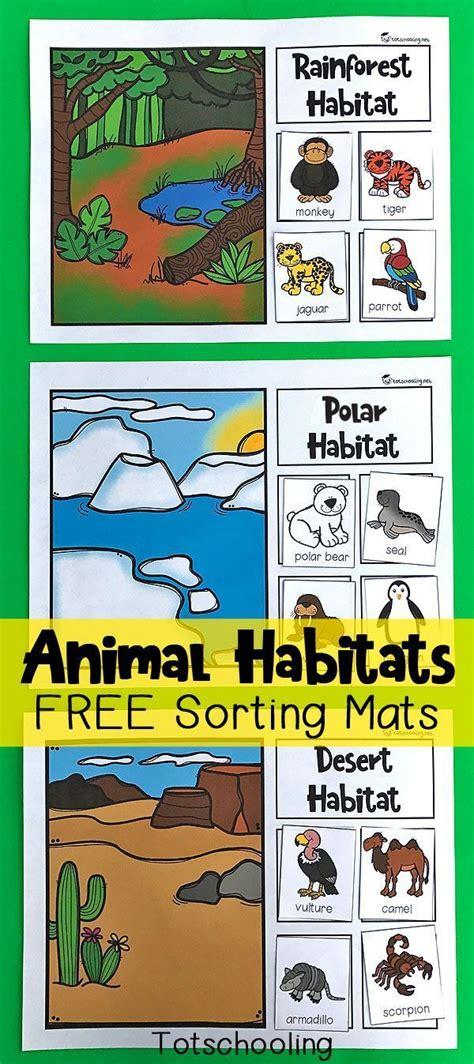 animal habitats sorting mats animal habitats science