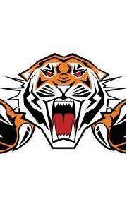 olivia282 – Tigers