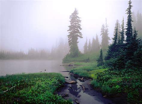 fog  landscape photography digital photography review