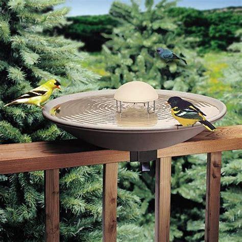 bird bath water gardenersedge