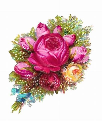 Transparent Bouquet Flowers Flower Pink Roses Rose