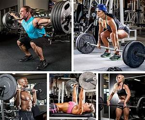 Novice Lifters  Start Here   With Images