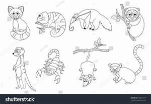 Coloring Page Preschool Children Set Different Stock Vector 690637777 Shutterstock