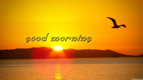 Good Morning Pictures, Images, Graphics And Comments