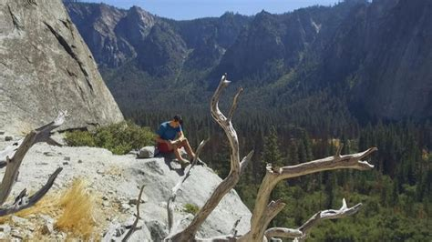 Climber Alex Honnold Reflects What Took Scale