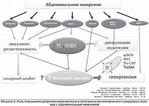 Гипертония 2 стадии дислипидемия что это такое