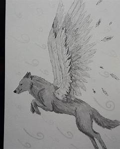 22+ Amazing Collection Of Wolf Drawing|Drawings | Design ...