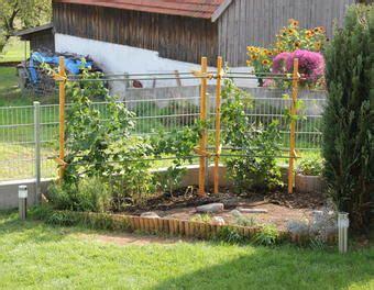 Garten Pflanzen Himbeeren by Rankhilfe Pergola F 252 R Himbeeren Und Brombeeren Garten