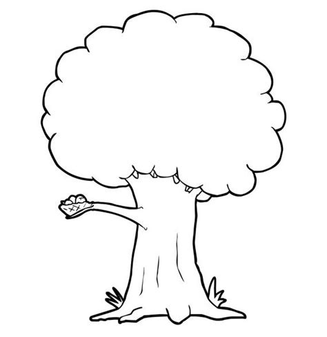gambar sketsa pohon