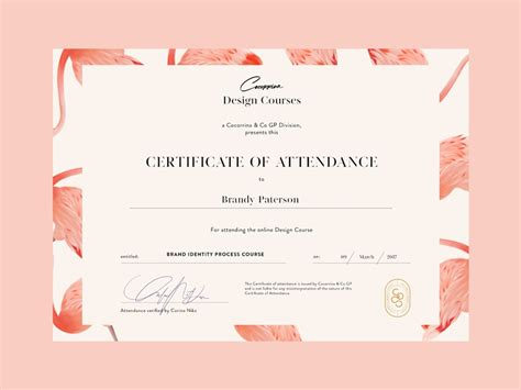 certificate  courses  corina nika  dribbble