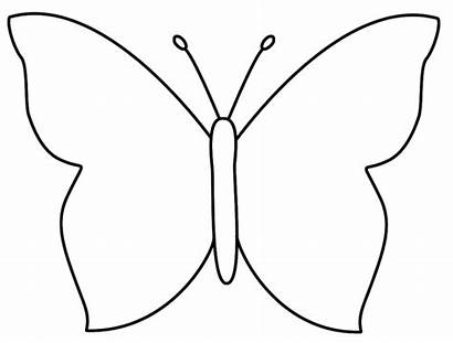 Butterfly Outline Clipart Film Clipartlook Te