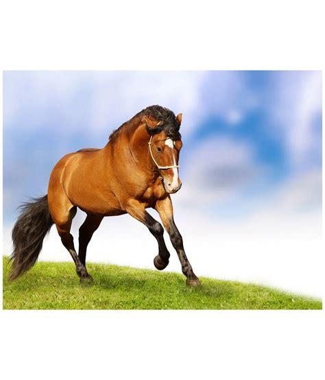 horse multicolor animals kkc horses grace poster natural india discontinued