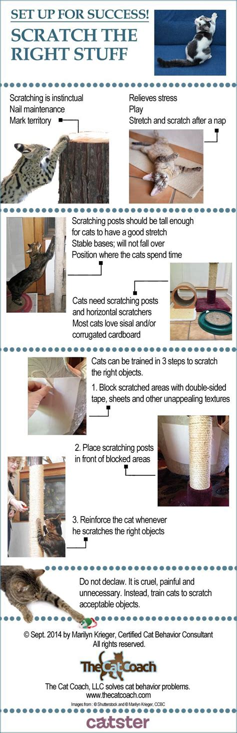 sisal rope ideas  pinterest scratching post