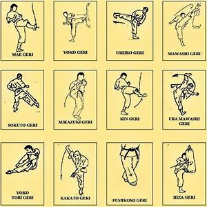 List Of Karate Kicks With Instructions  U2013 Black Belt Wiki