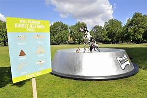 World's biggest dog bowl built by fetch.co.uk and here's ...