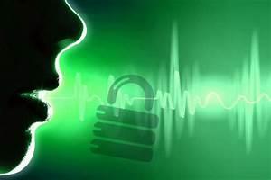 Voice Biometrics  U2013 Plugging The Opm Breach
