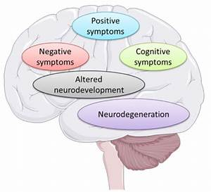 An Overview To Symptoms And Etiology Of Schizophrenia