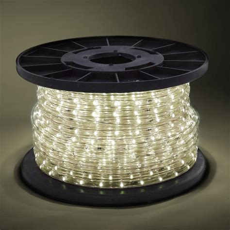 100 2 wire warm white led rope light in outdoor 110v