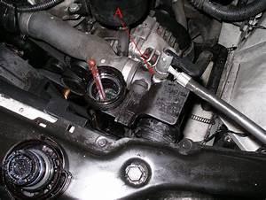 Circuit De Refroidissement Moteur : bmw 325 ci e46refroidissement ~ Gottalentnigeria.com Avis de Voitures
