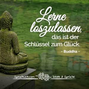 Buddha Sprüche Bilder : wir leben nicht um zu glauben sondern um zu lernen dalai lama zitat ~ Orissabook.com Haus und Dekorationen