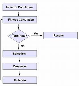 Genetic Algorithms