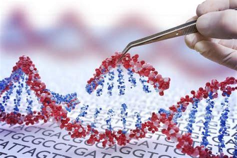 las primeras modificaciones geneticas de bebes son