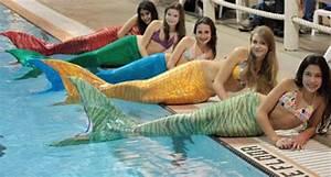 Mermaid Fins: A New Pool Trend? | Underwater, Pools and ...