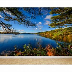 Wall Mural Lake in Autumn, Peel and Stick Repositionable
